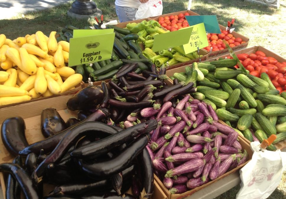 Arlington Farmers' Market – Starts June 4th